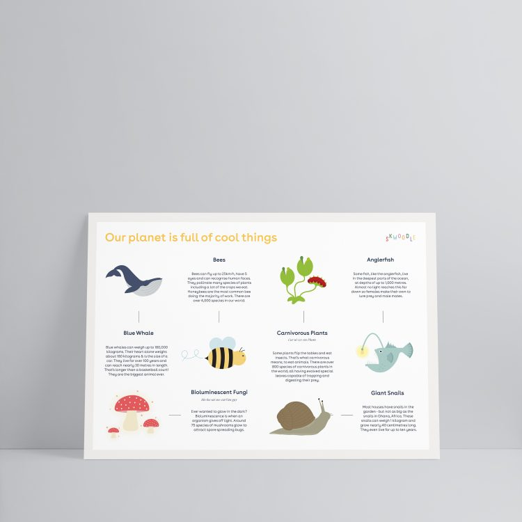 Our world science kids nature biodiversity wildlife poster Skwoodle